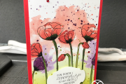 Peaceful Poppies Dsp Stampin' Up!