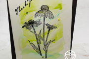 Stampin' Up! Nature's Harvest